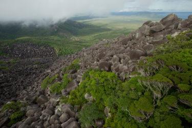 メルヴィル山地の景色がヤバイ!生き物や成り立ちが気になる!